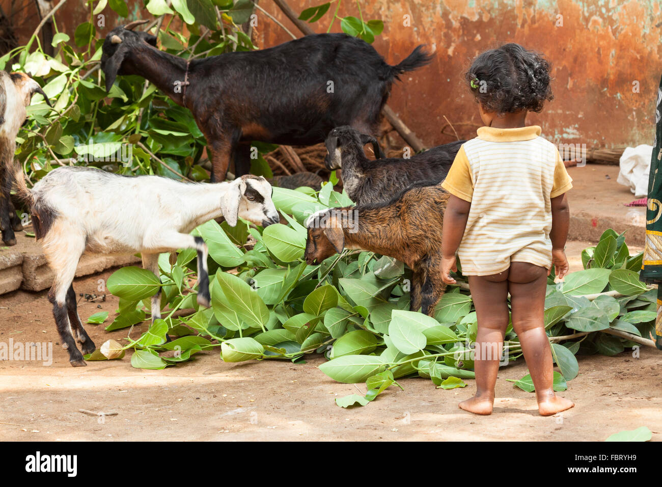 A little girl with kids in remote village - South India. - Stock Image