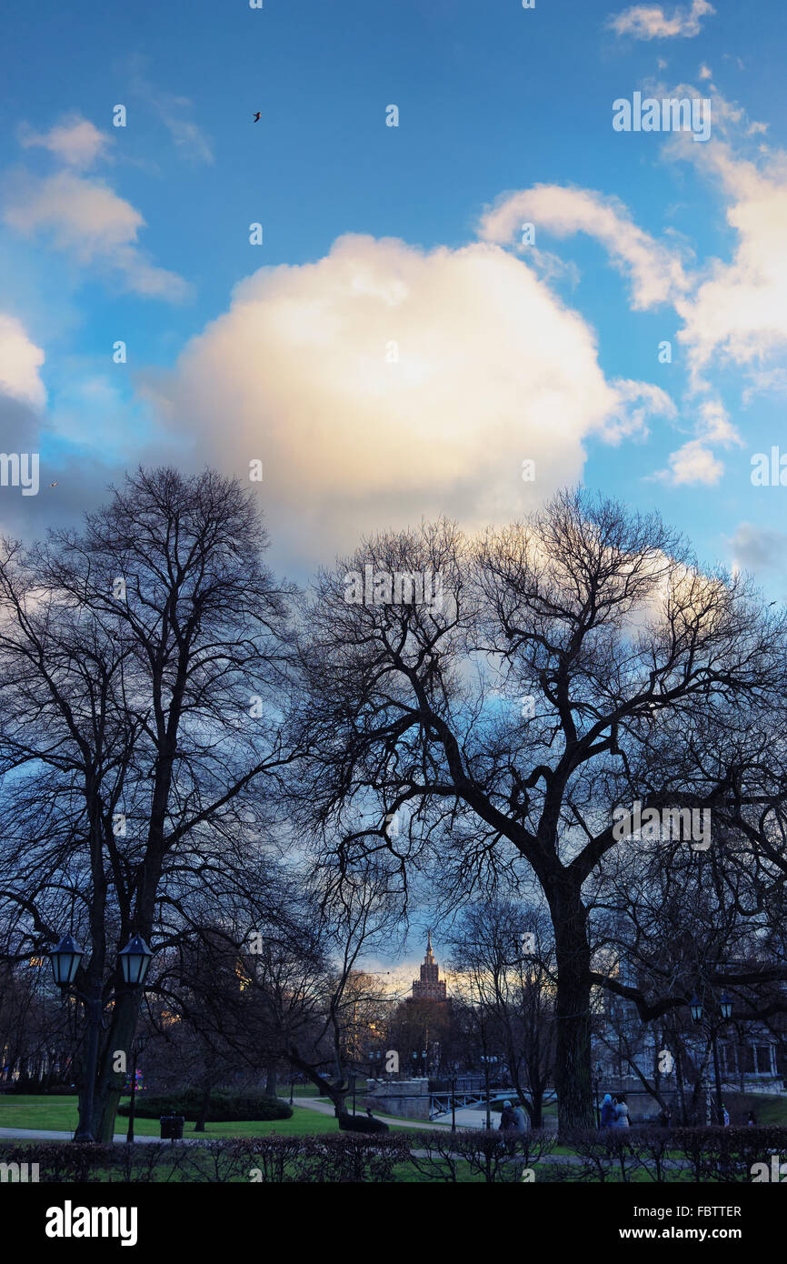 Trees without leaves on a background of blue sky with clouds in city park in the center of Riga, overlooking the - Stock Image