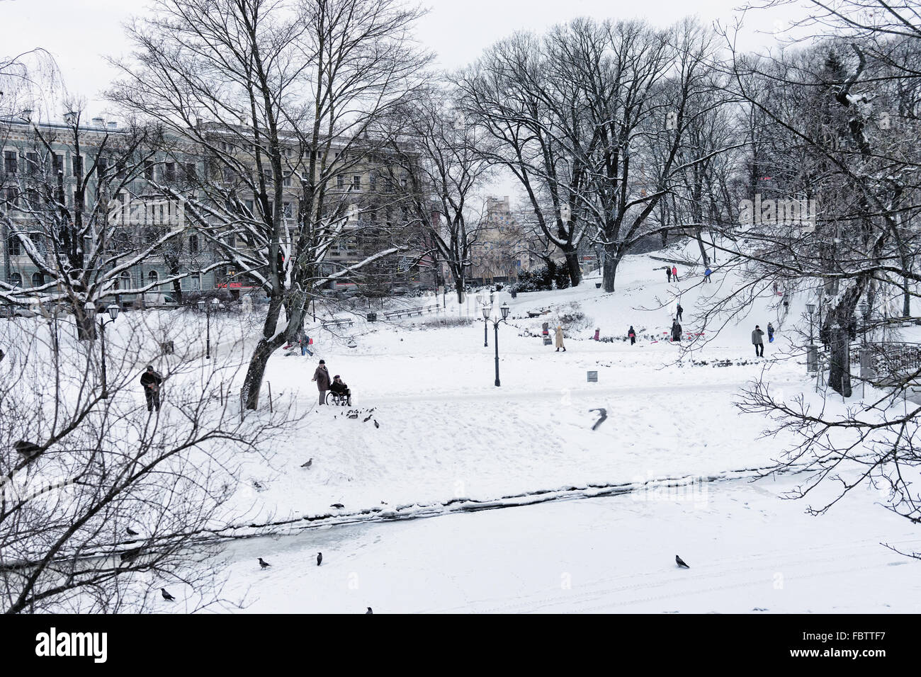 People walk and feed the birds in the city park Riga snowy winter background of houses and trees. Latvia - Stock Image