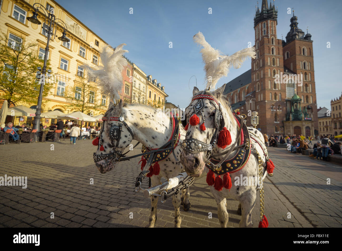 KRAKOW, POLAND - November 13, 2015: Horse carriages at main square in Krakow in a autumn day, Poland on November - Stock Image