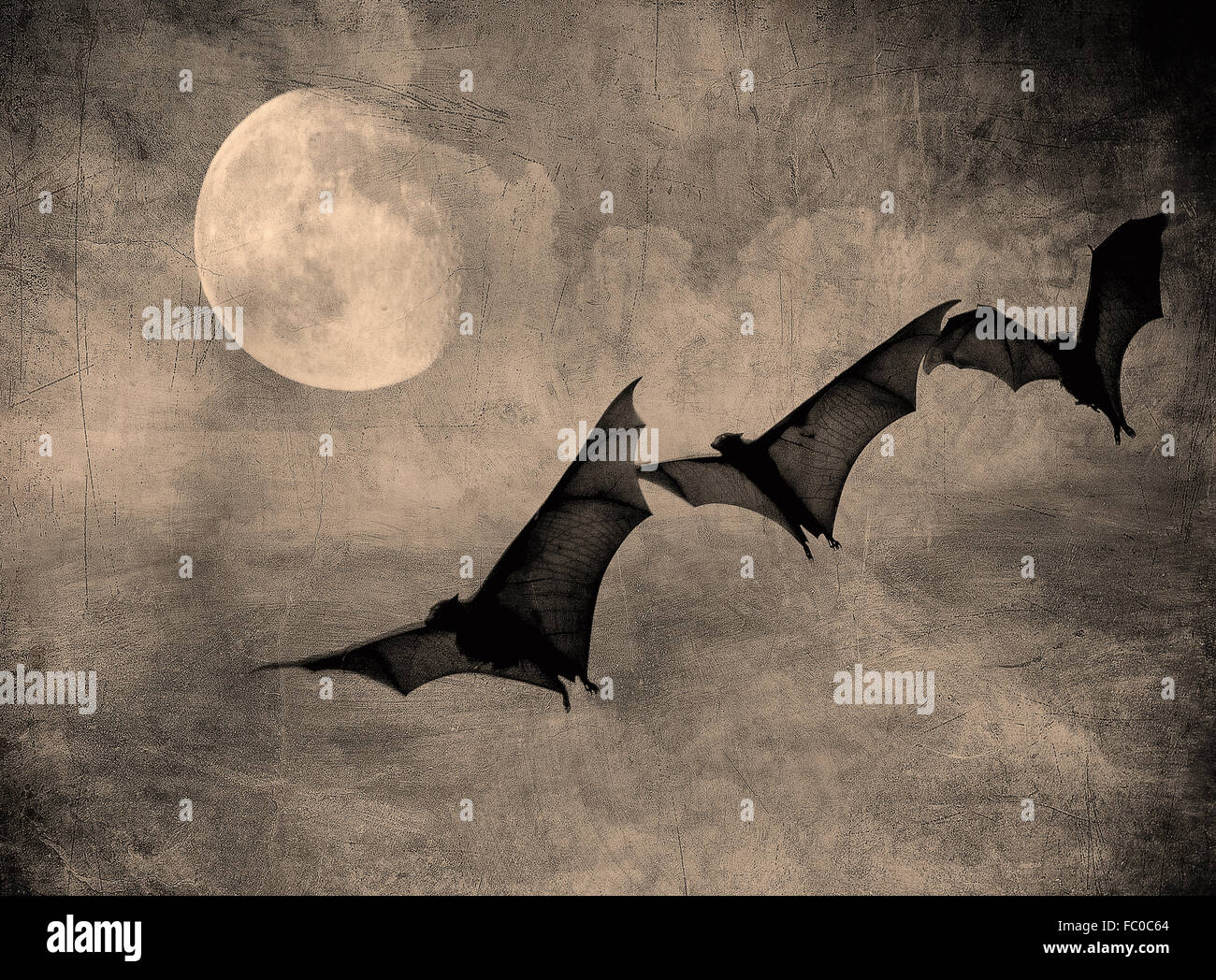 bats in the dark cloudy sky, perfect halloween background - Stock Image