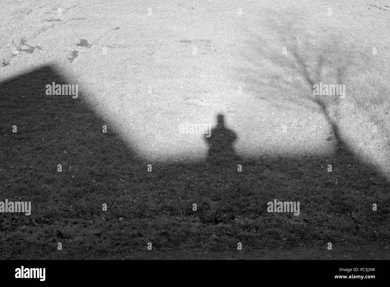 shadows-of-a-man-house-and-bare-tree-cas