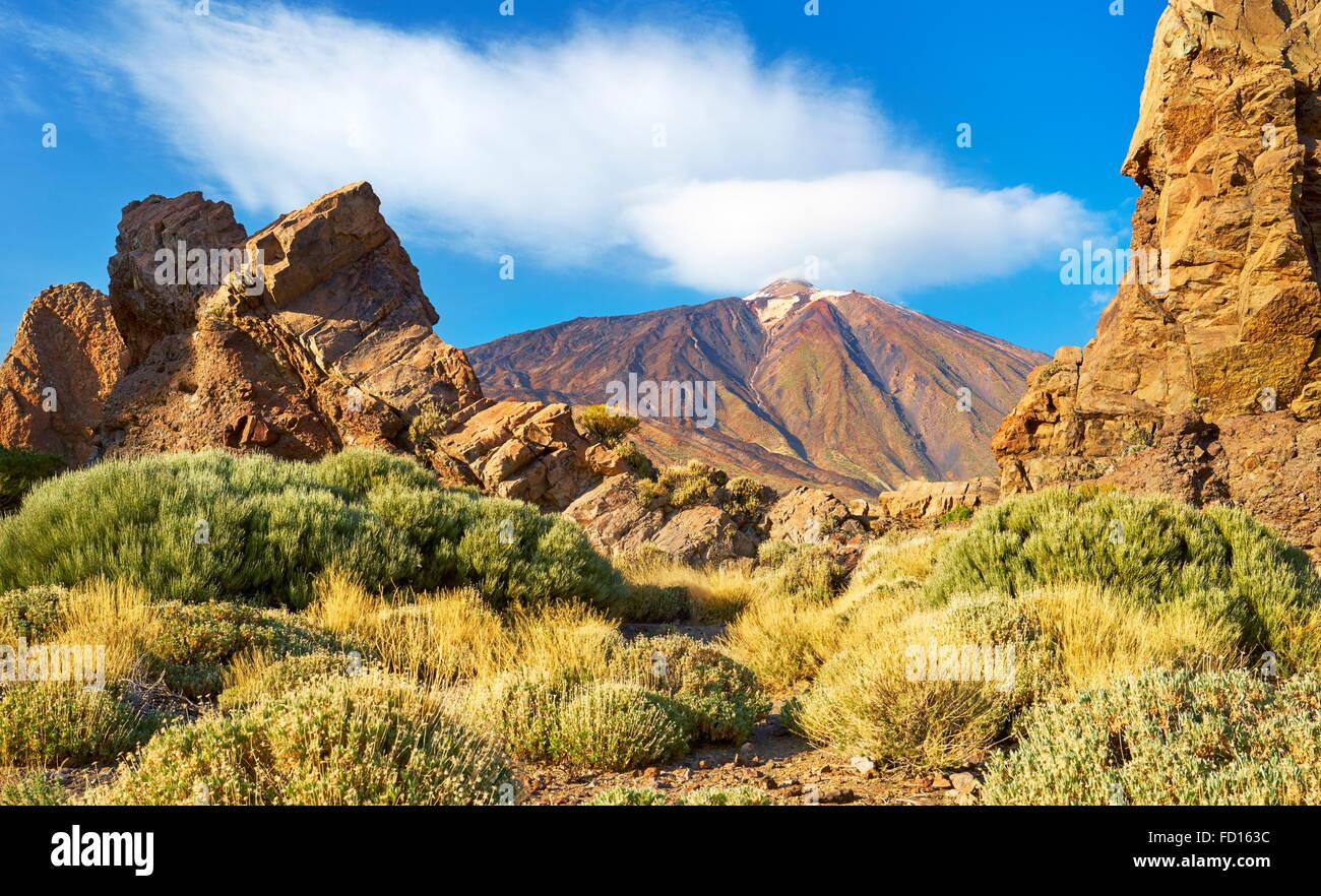 Teide National Park, Canary Islands, Tenerife, Spain - Stock Image