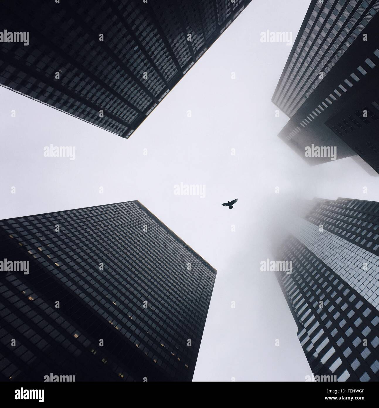 Directly Below Shot Of Modern Buildings - Stock Image