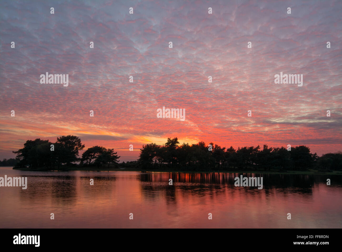 brightly-coloured-sunset-with-mackerel-sky-and-reflections-at-hatchet-FF8RDN.jpg