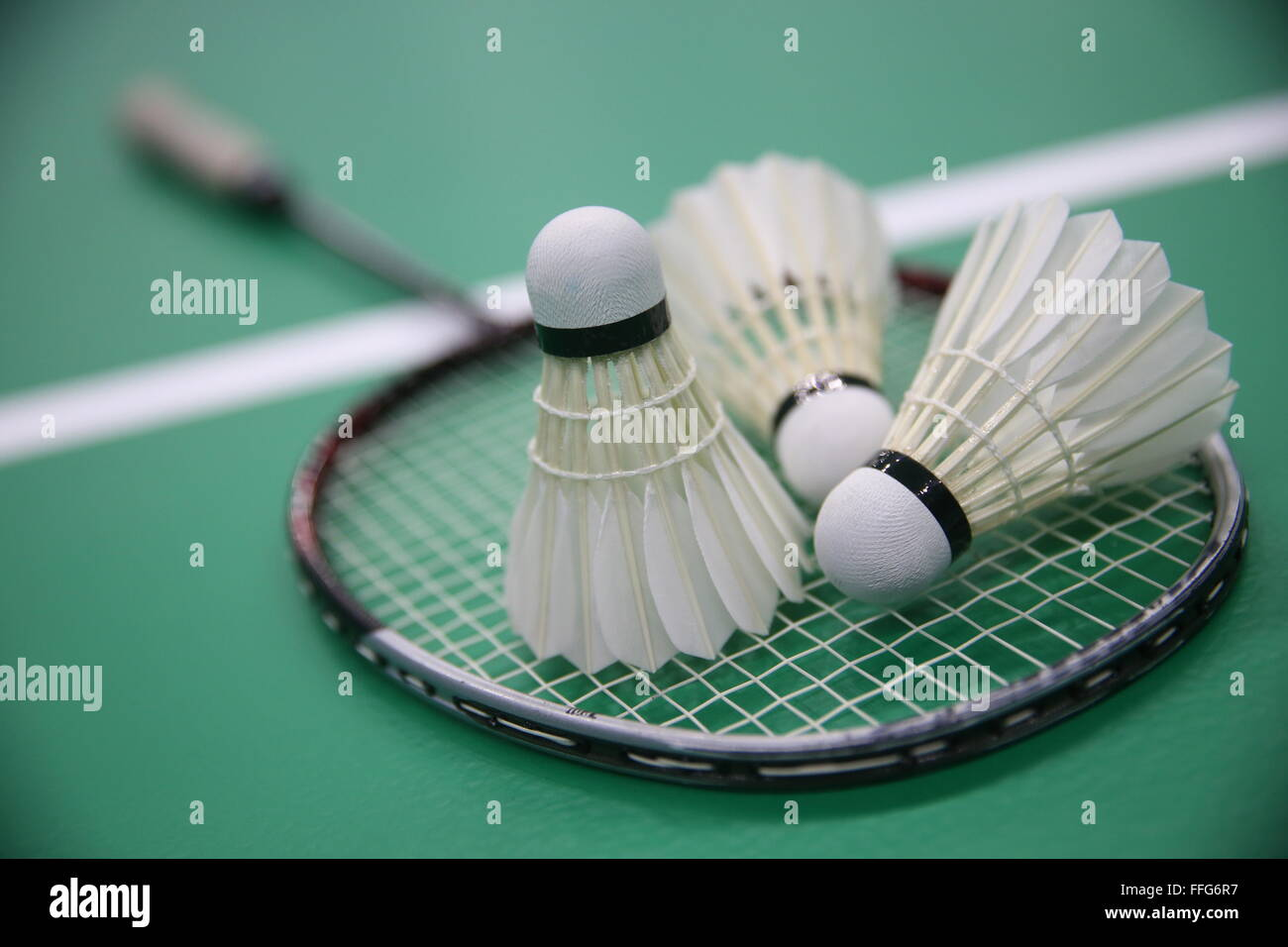 Kazan, Russia. 13th Feb, 2016. A badminton competition held as part of the opening of the Kazan Badminton Center. - Stock Image