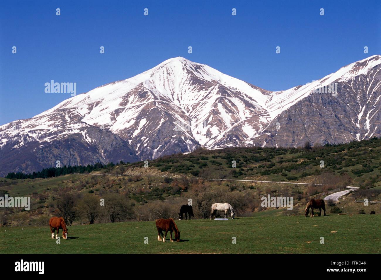 italy, abruzzo, gran sasso e monti della laga national park, monti della laga Stock Photo
