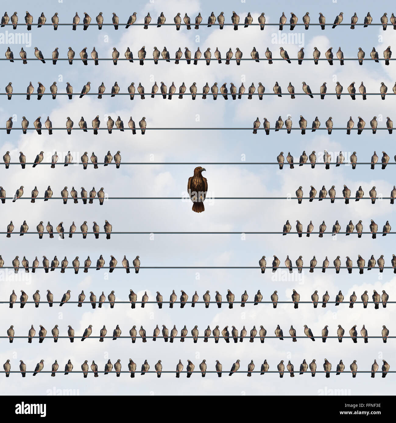 Avoiding risk as a business avoidance concept with a group of birds on a wire staying away from a threatening eagle - Stock Image
