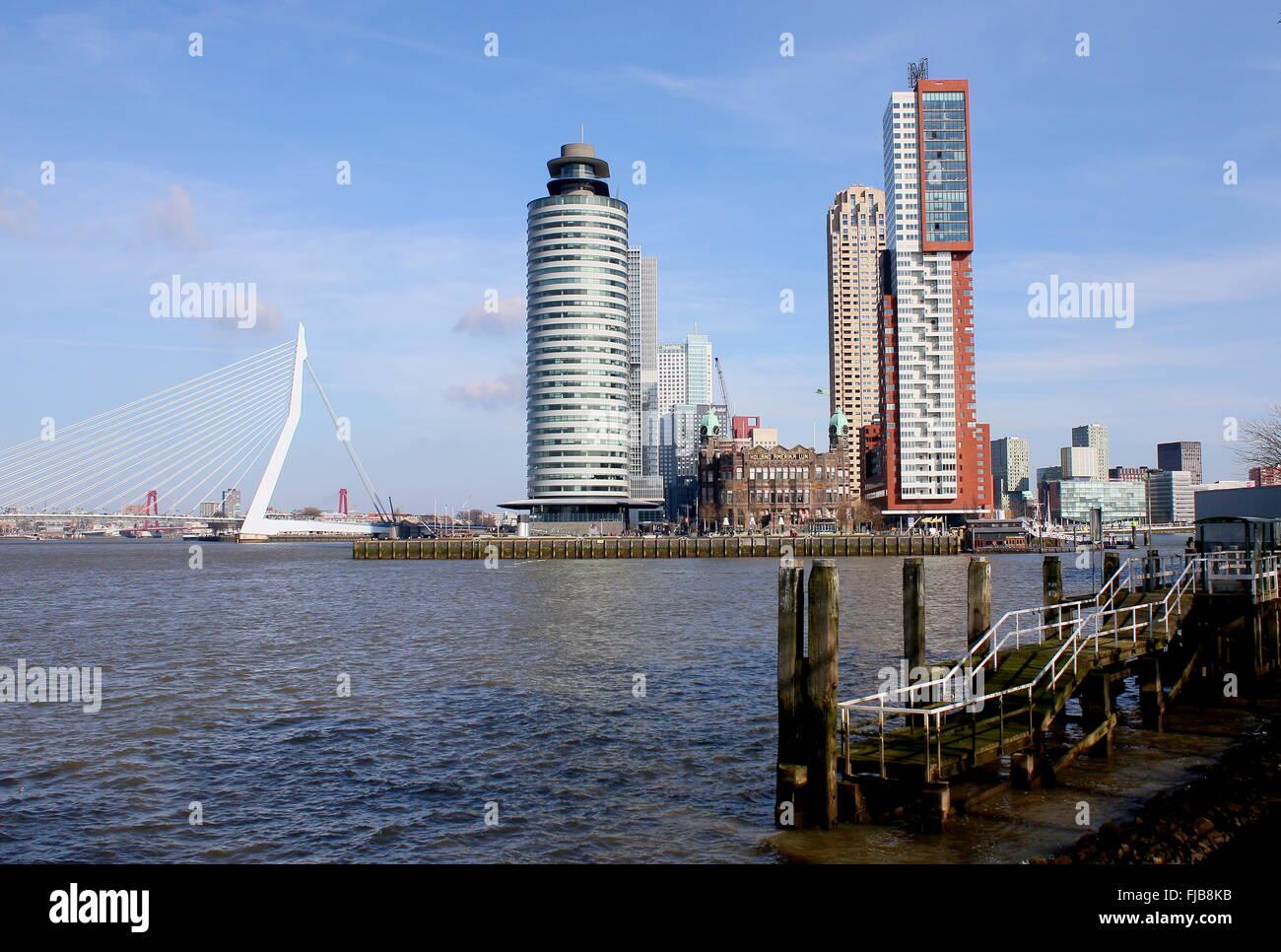 Skyline of Rotterdam, Netherlands. Erasmus bridge, World Port Center, Hotel New York, Montevideo tower on Kop van - Stock Image