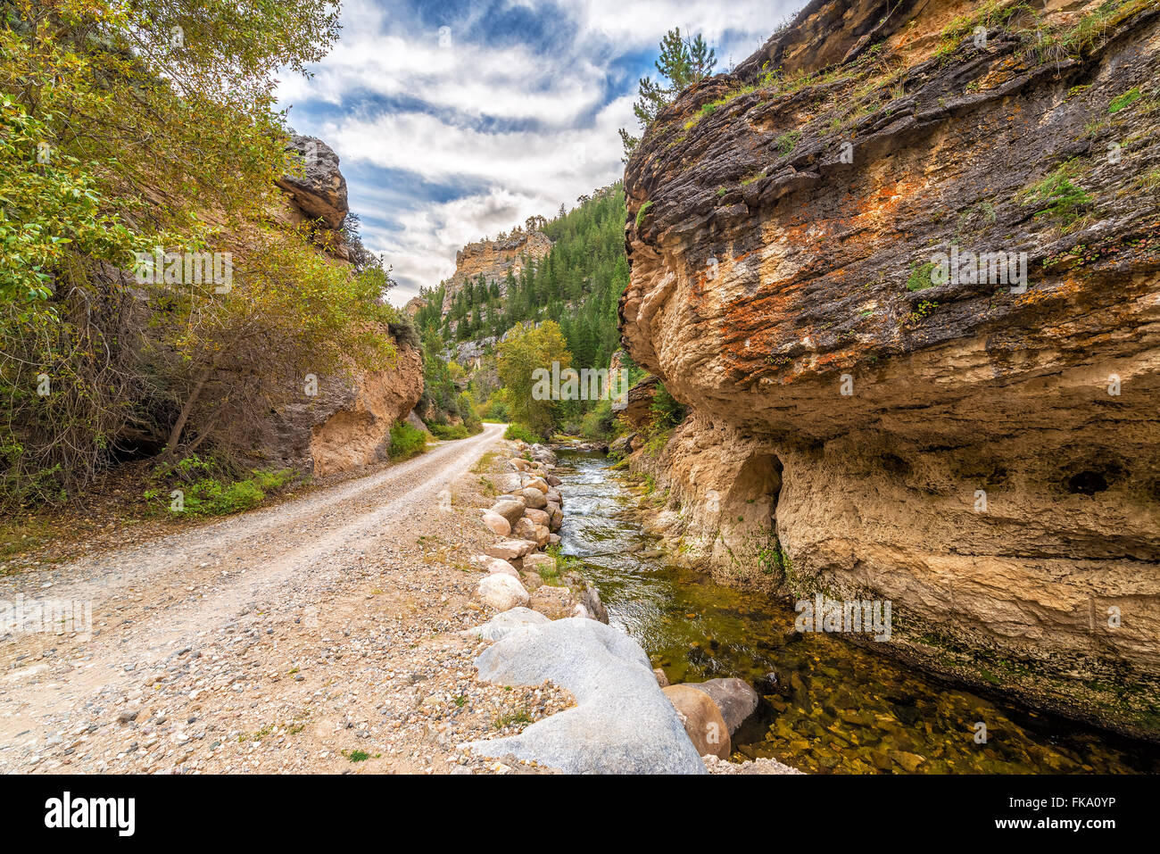 Road through Crazy Woman Canyon in Bighorn National Forest near Buffalo, Wyoming - Stock Image