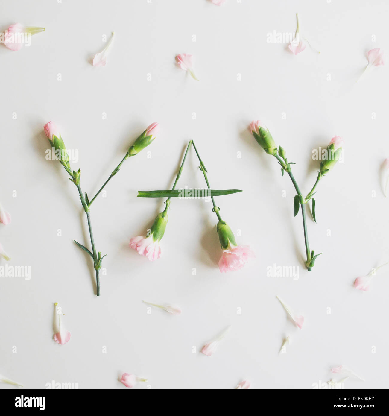 YAY spelled out with carnations Stock Photo