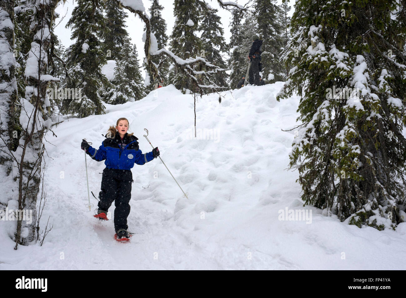 Salla, snowshoe trip to Ice Wall, Salla, Lapland, Finland. You can experience the winter nature even by walking - Stock Image
