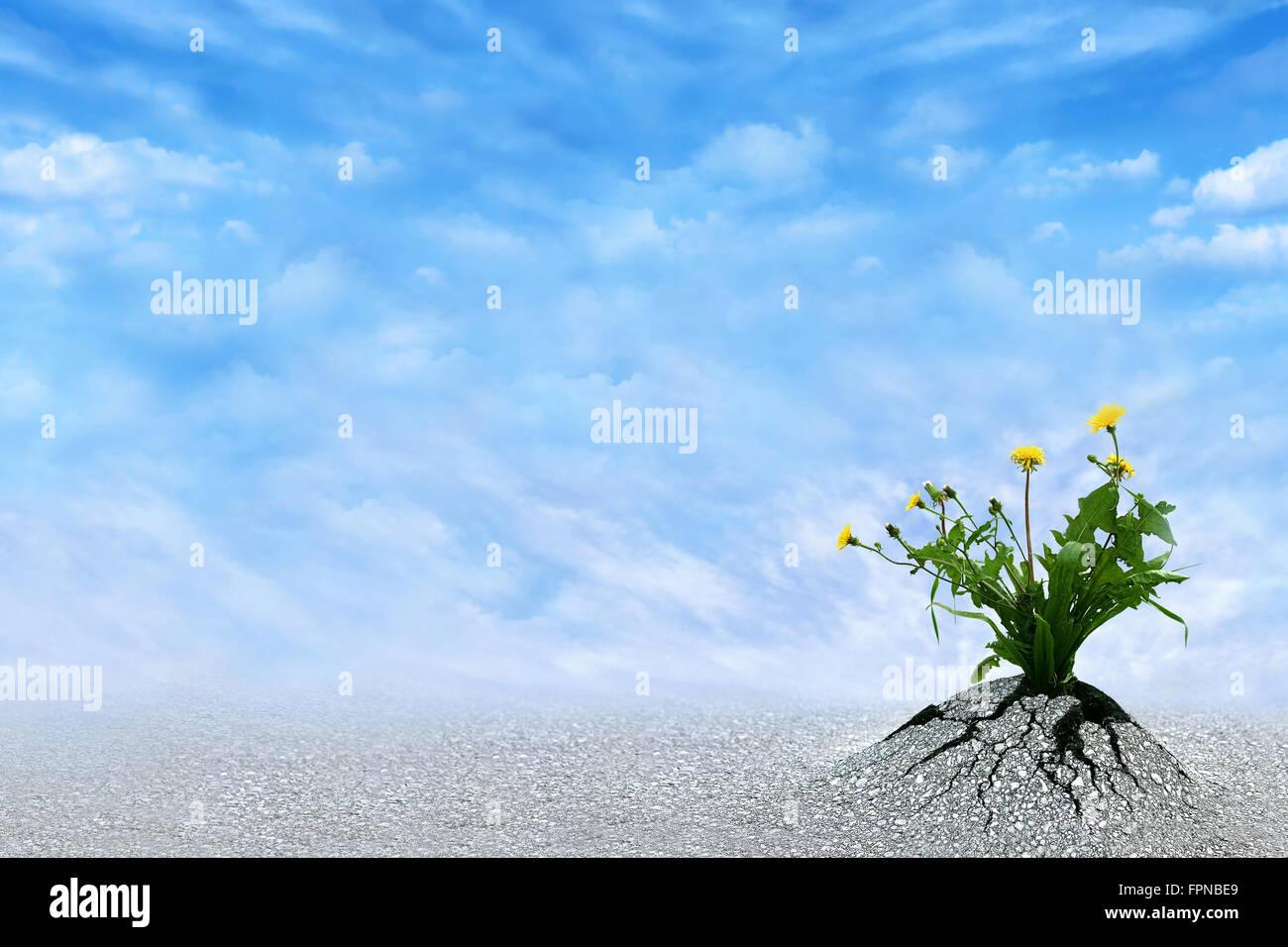 life persists inspirational image for presentations regarding stock