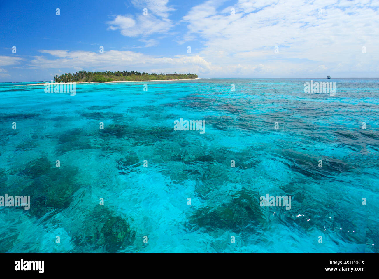 Central America, Belize, Lighthouse atoll, a coral caye in the Caribbean Sea, island, coral reef - Stock Image