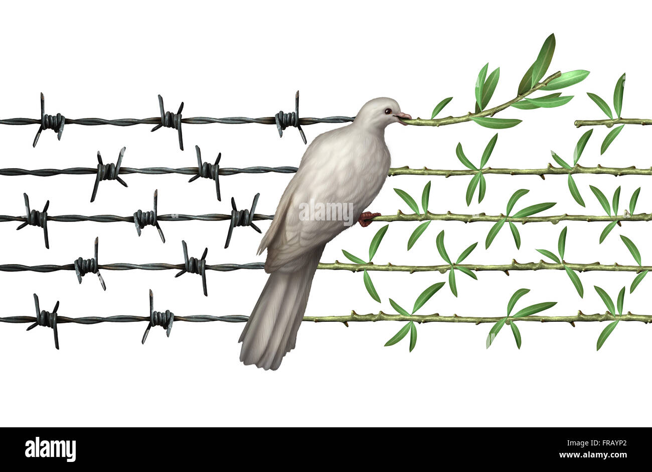 Optimism concept and diplomacy hope symbol as a dove on barbed wire ...