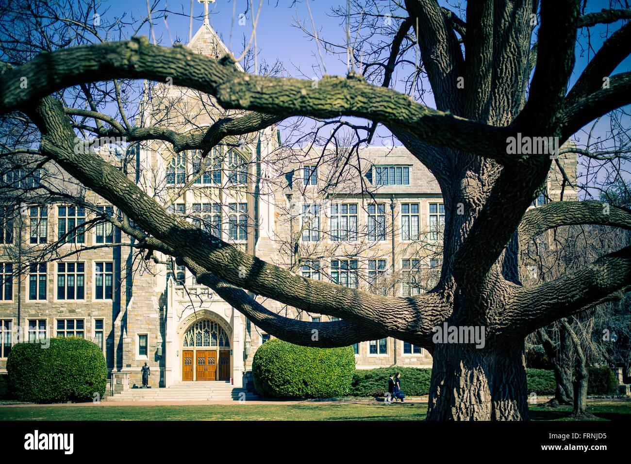 Georgetown University - Stock Image