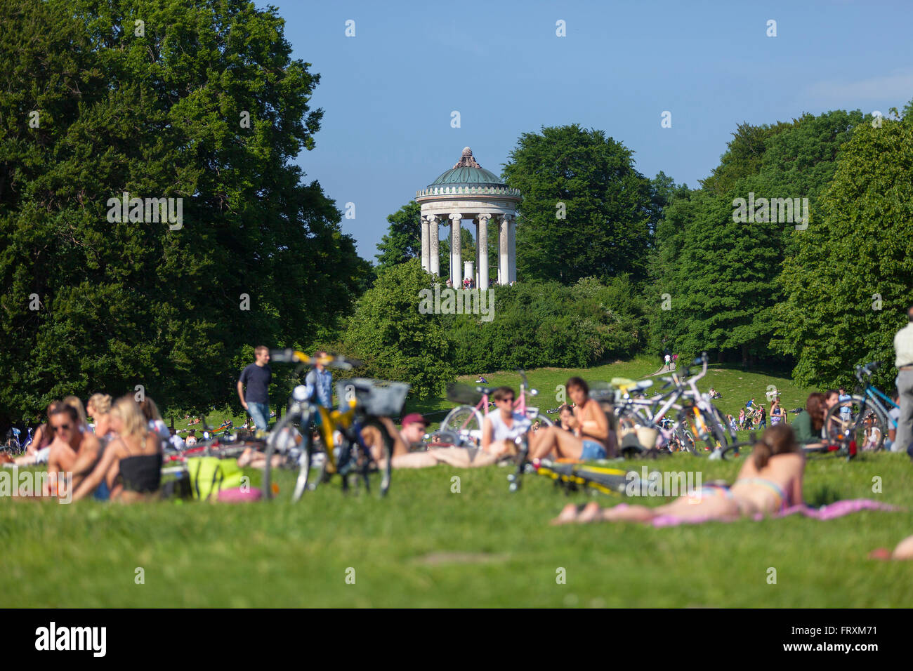 summer in the english garden with monopteros englischer garten stock photo 100775557 alamy. Black Bedroom Furniture Sets. Home Design Ideas