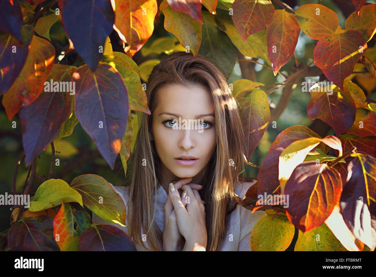 Beautiful girl portrait . Last autumn colors - Stock Image