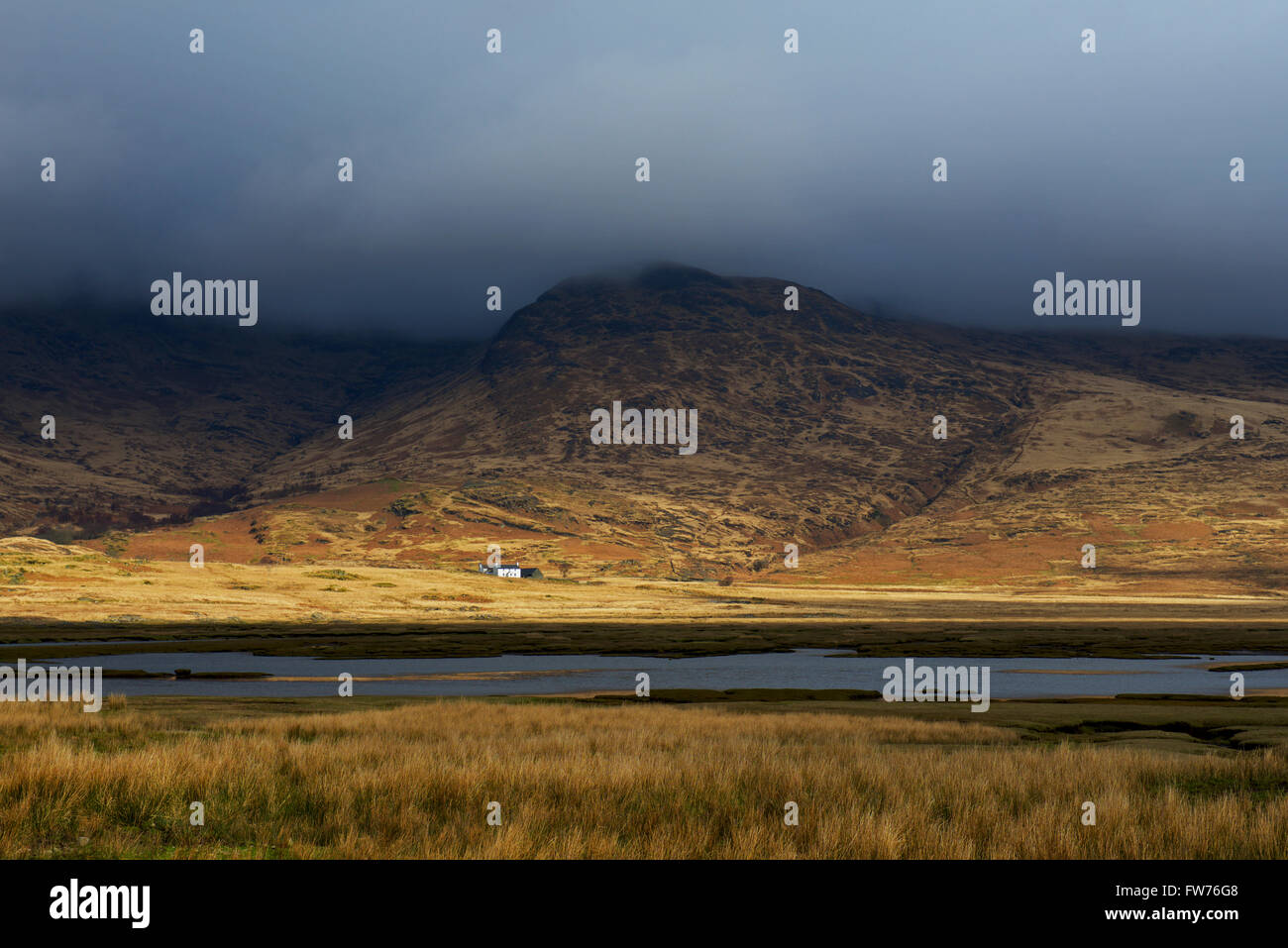 remote-cottage-on-the-isle-of-mull-inner-hebrides-scotland-uk-FW76G8.jpg