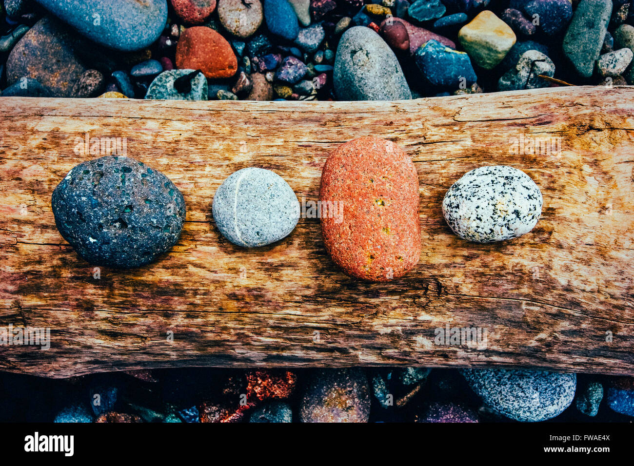 Colorful Stones on Driftwood Stock Photo
