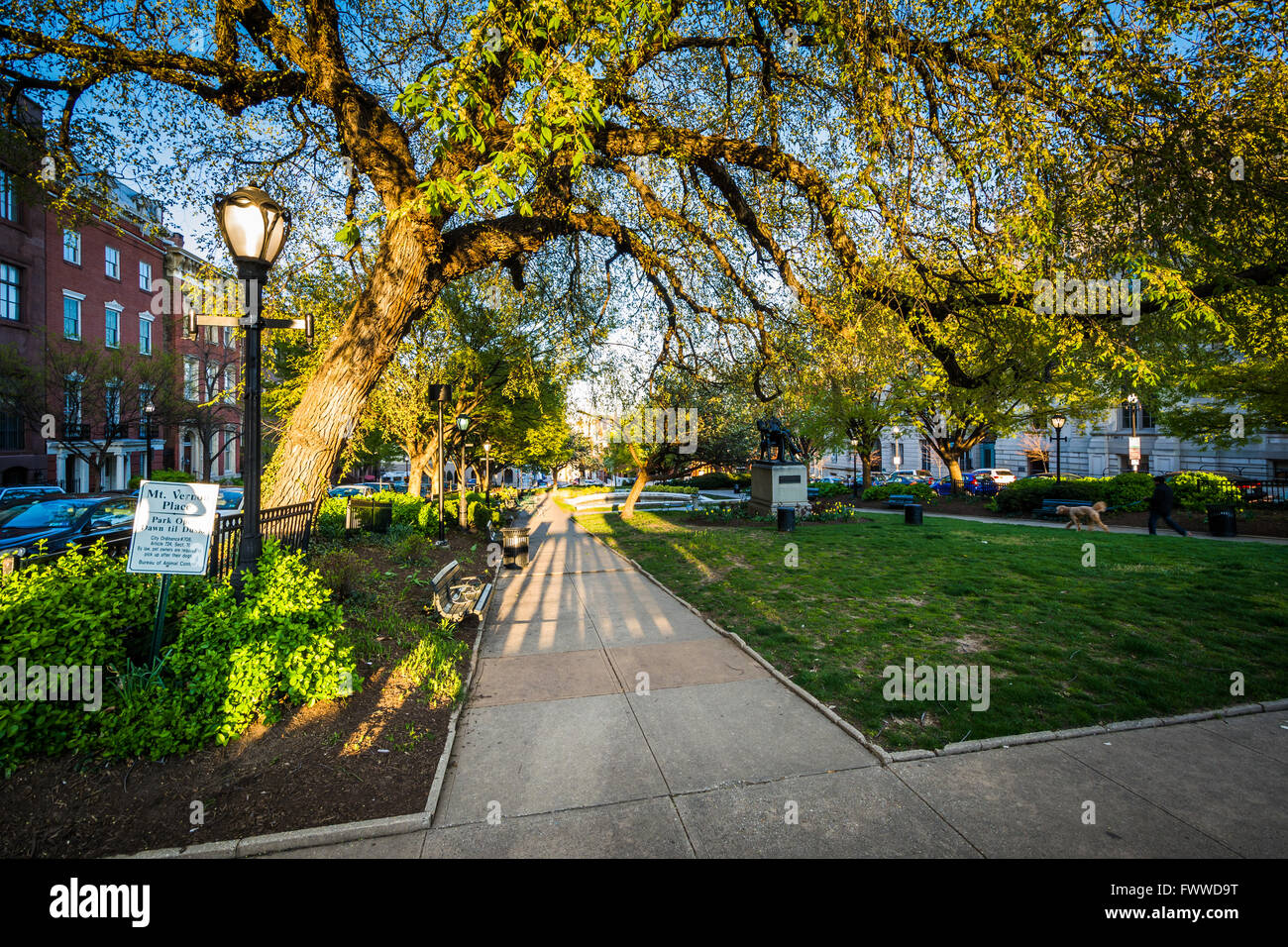 Trees and walkway at a park in Mount Vernon, Baltimore, Maryland. Stock Photo