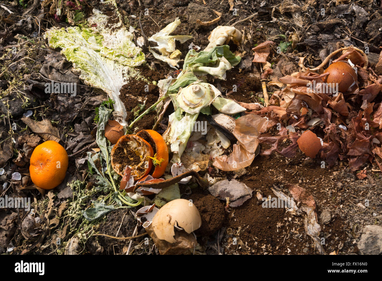 Garden compost formed from food and garden waste Stock Photo ...