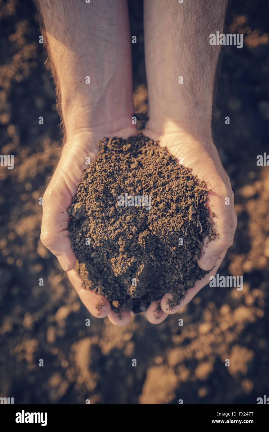 Farmer holding pile of arable soil and examining its quality on fertile agricultural land, male agronomist preparing - Stock Image