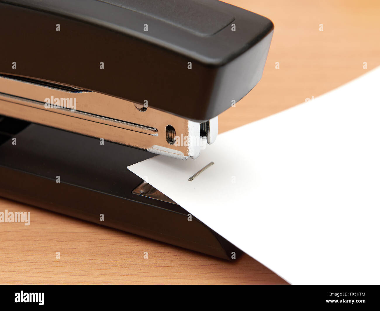 Closeup of a modern office stapler joining paper sheets - Stock Image