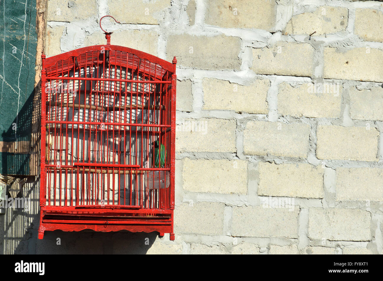 Bird In A Cage Hang On The Concrete Wall Stock Photo 102844225 Alamy