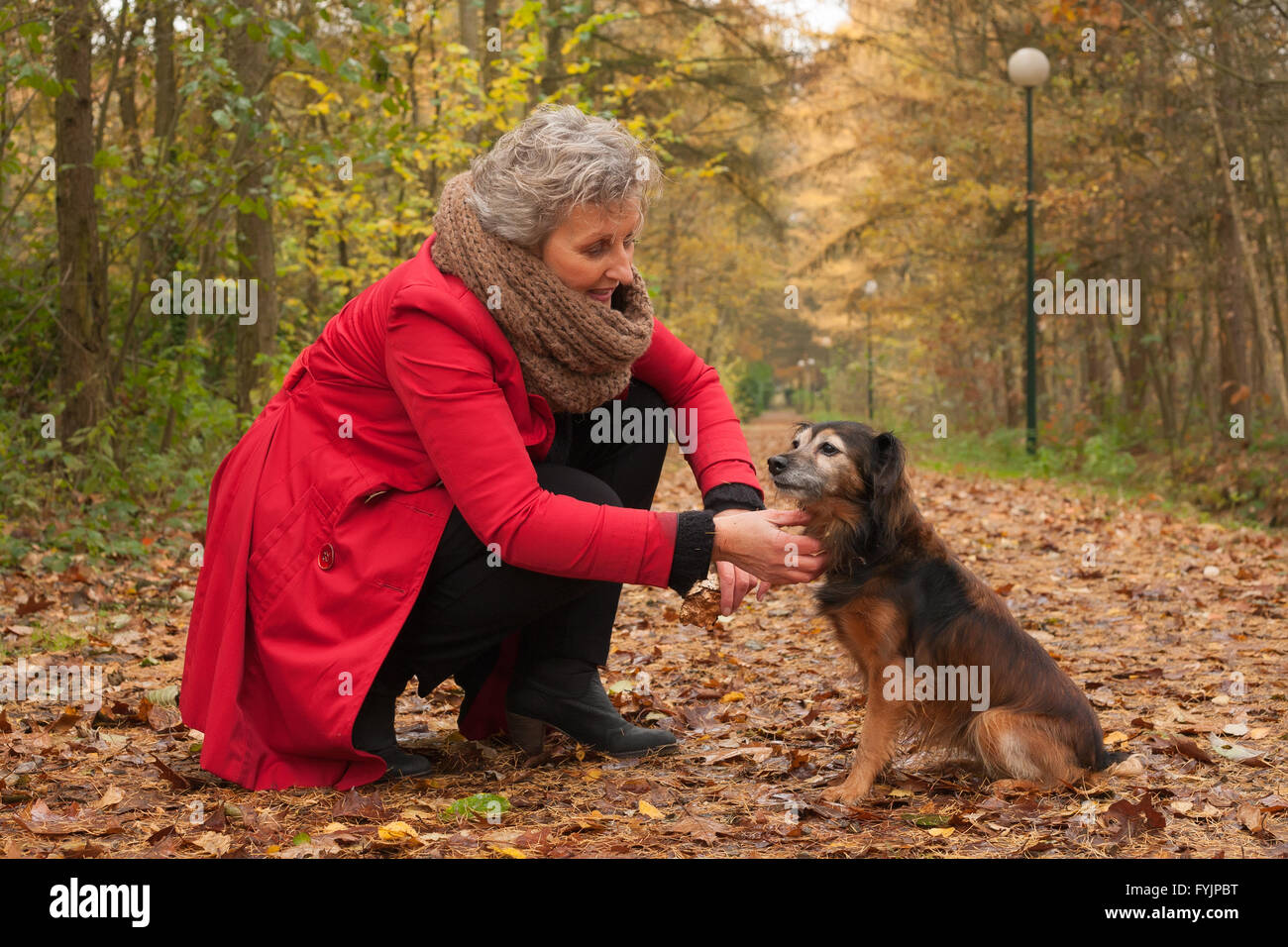Retired woman is caring of her dog - Stock Image