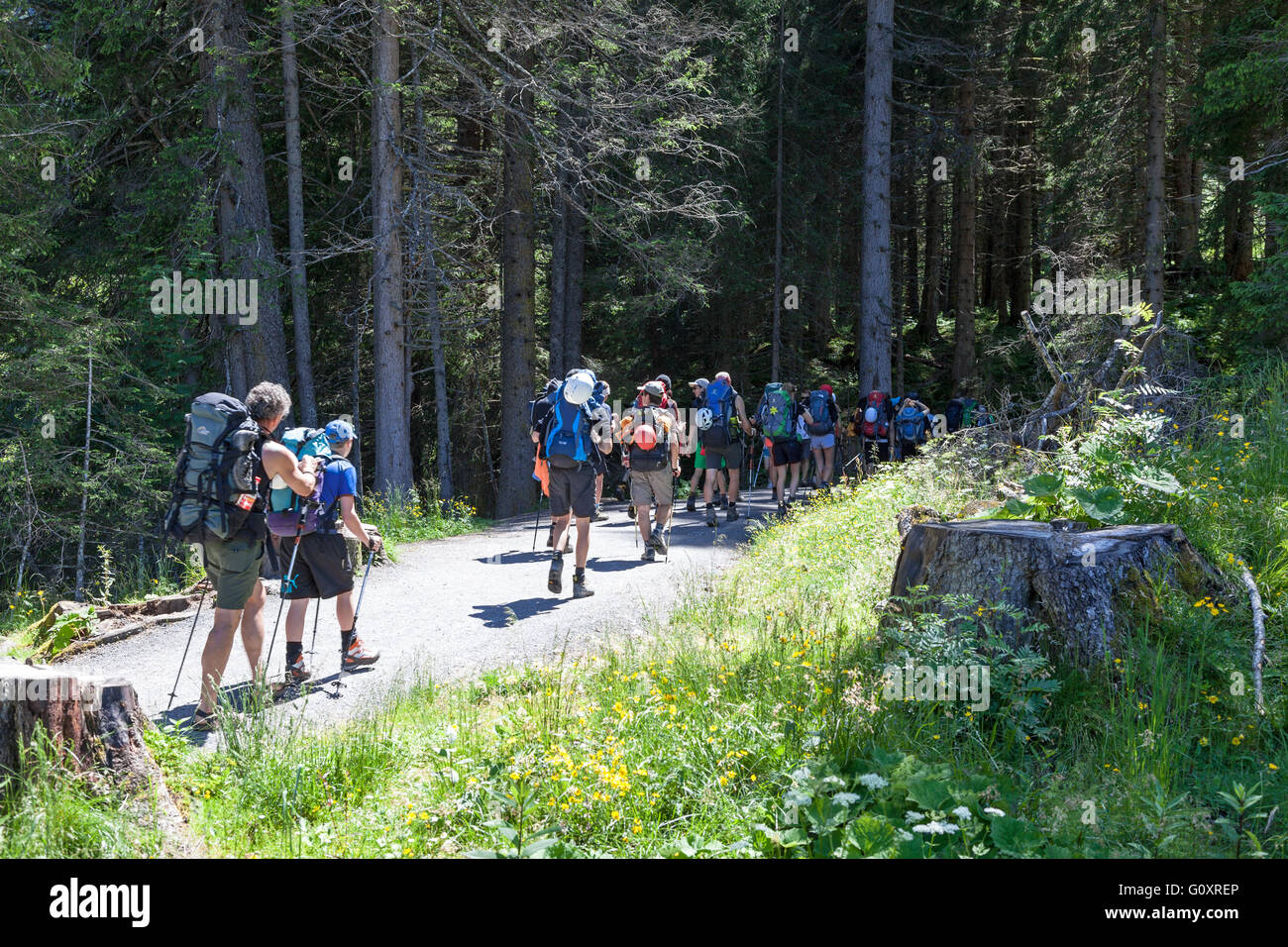 a-party-of-walkers-ramblers-or-hikers-at-the-krimml-waterfalls-austria-G0XREP.jpg