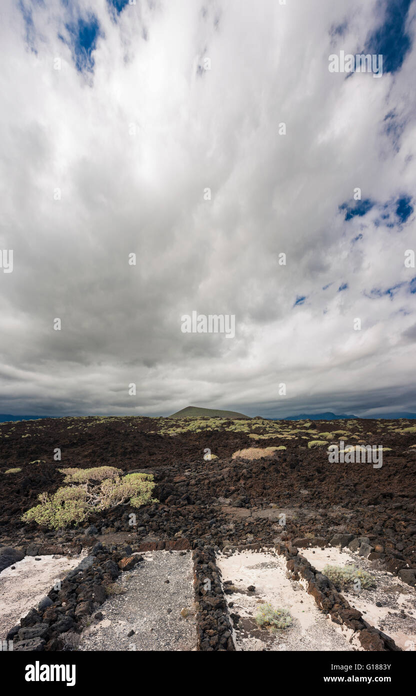 Disused small salt evaporation pans in the Malpais de Guimar, Tenerife, Canary Islands Stock Photo