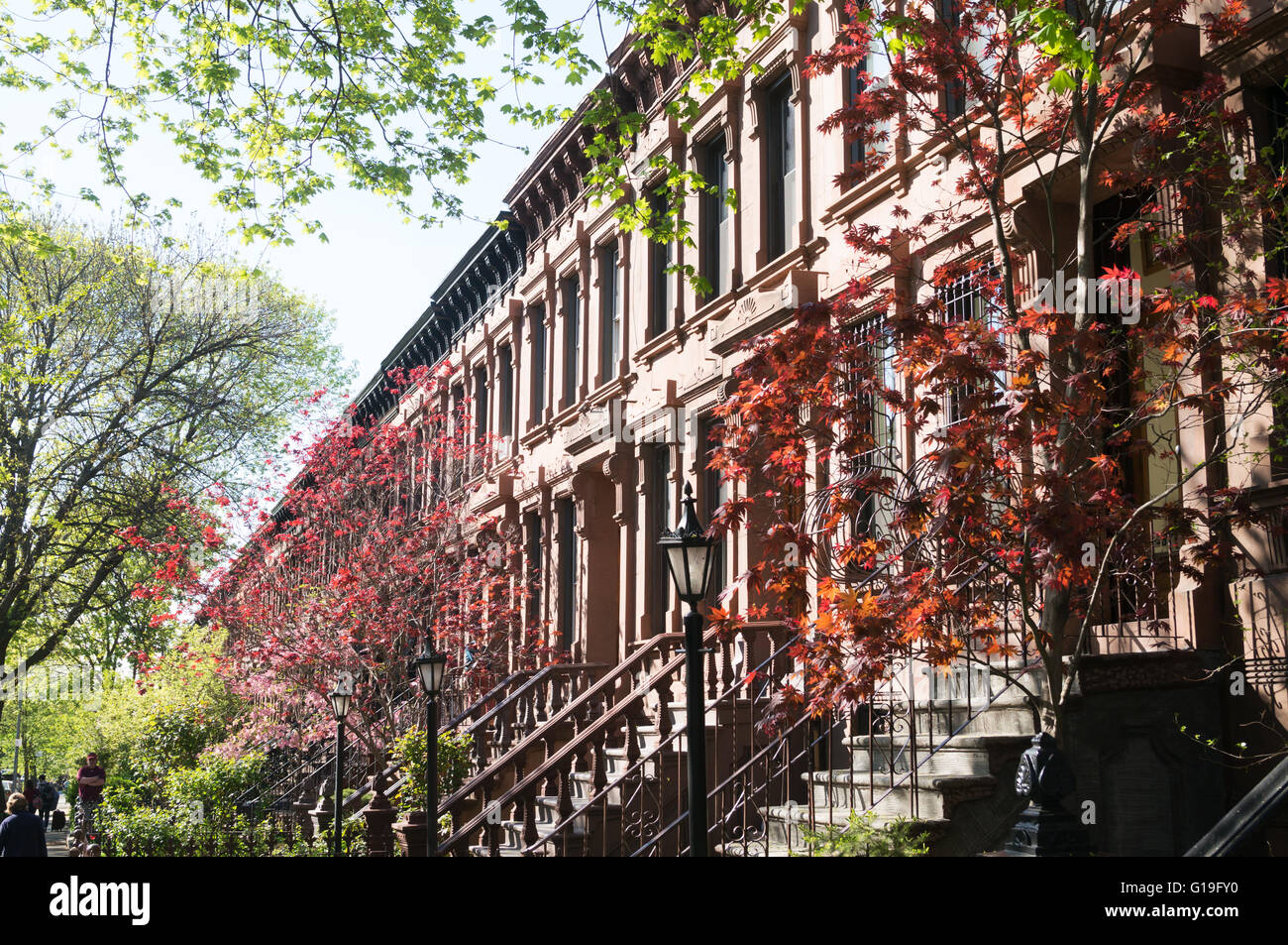 terrace-of-brownstone-houses-with-spring