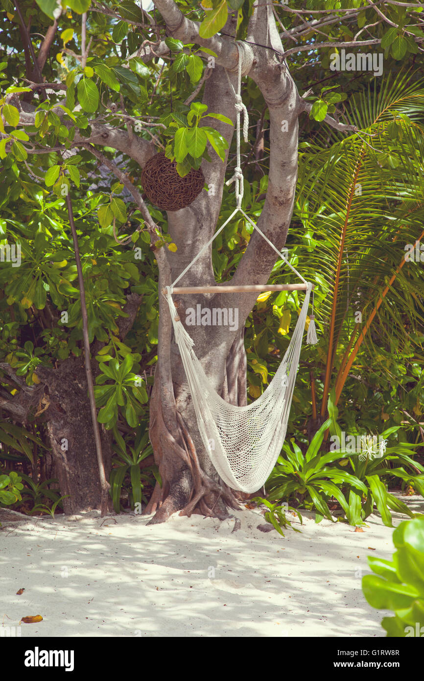 Hanging Hammock Hanging From Tree In The Maldives Island Stock Photo