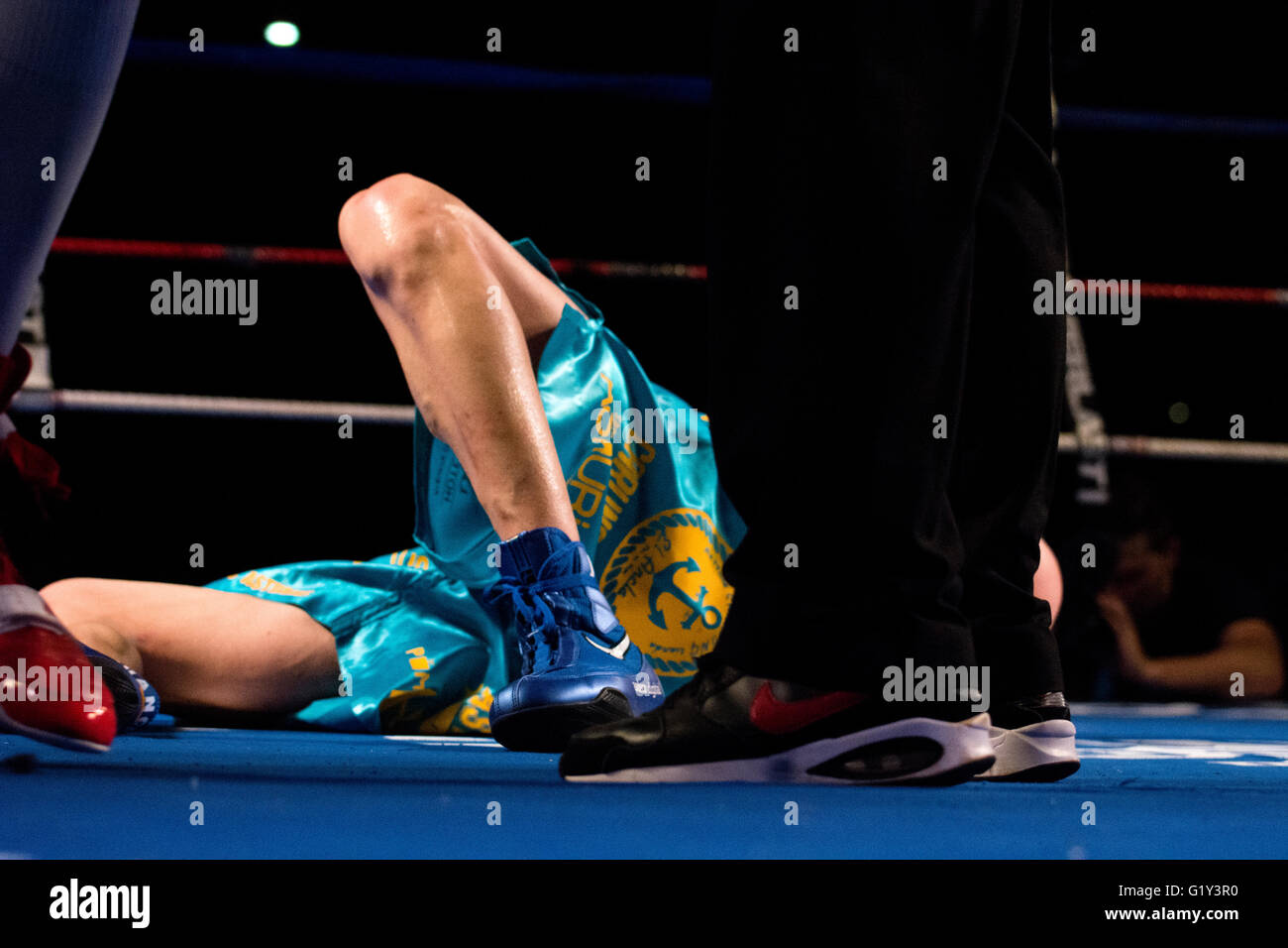 Gijon, Spain. 21st May, 2016. Juancho Gonzalez falls during the boxing match against Marc Vidal  of Spanish national - Stock Image