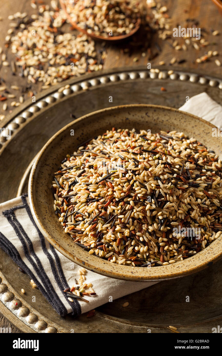 Raw Dry Organic Wild Rice in a Bowl - Stock Image