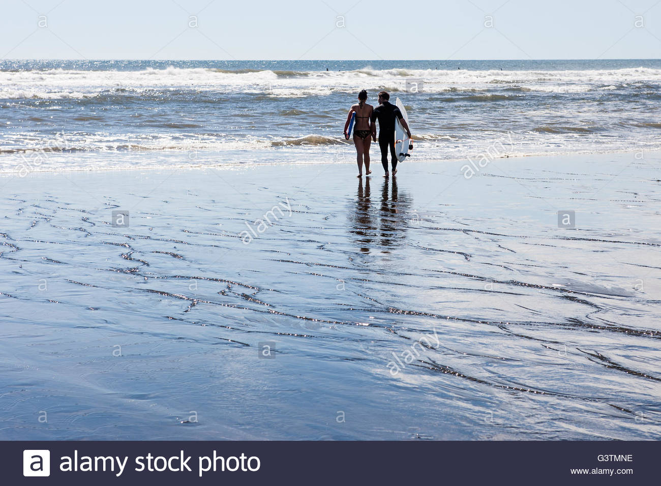 New Zealand, Auckland, Muriwai Strand, Rear view of couple walking with surf boards towards sea - Stock Image