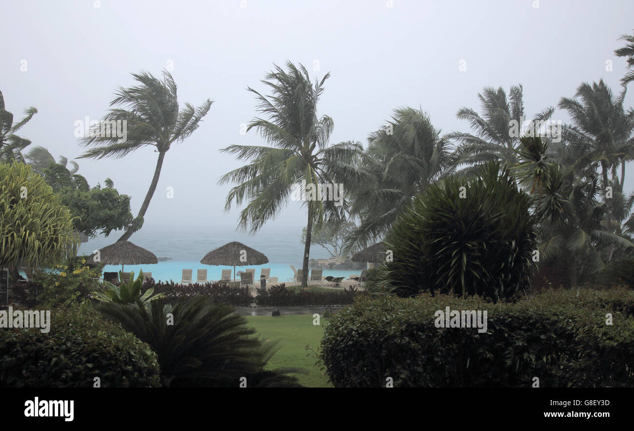 palm trees in tropical storm  papeete tahiti Stock Photo