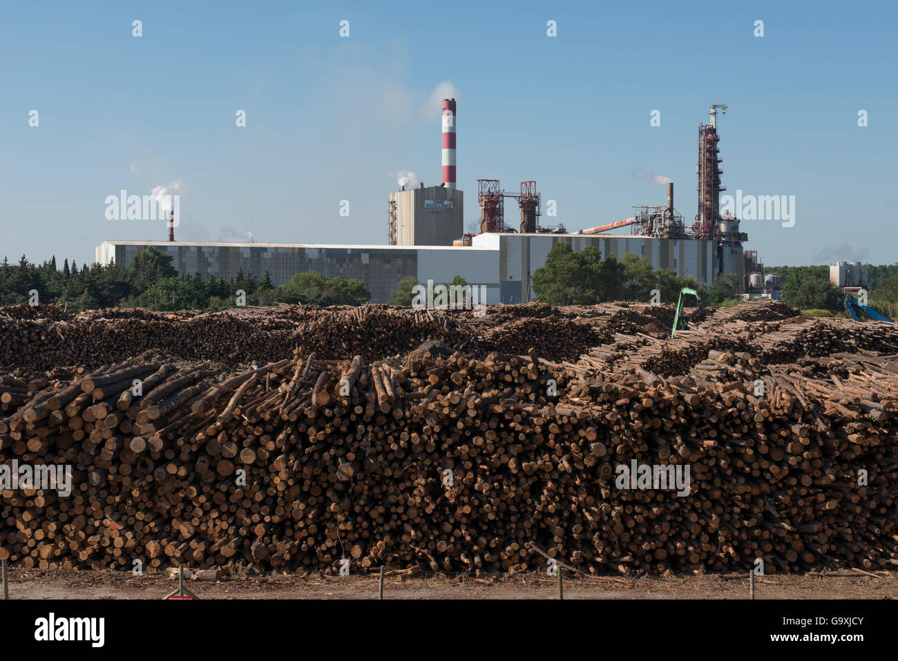 Fibre Excellence mill producing paper pulp, Tarascon, Provence, France, June. - Stock Image