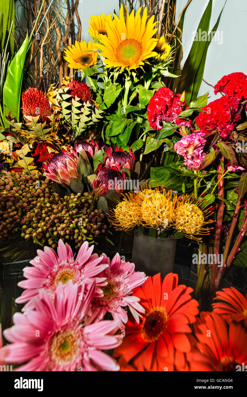 Exotic flower bouquet and bunch in a modern gift shop with various ...
