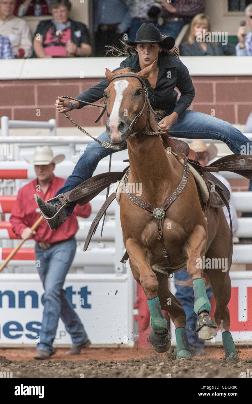 Ladies Barrel Racing  at the Calgary Stampede Stock Photo