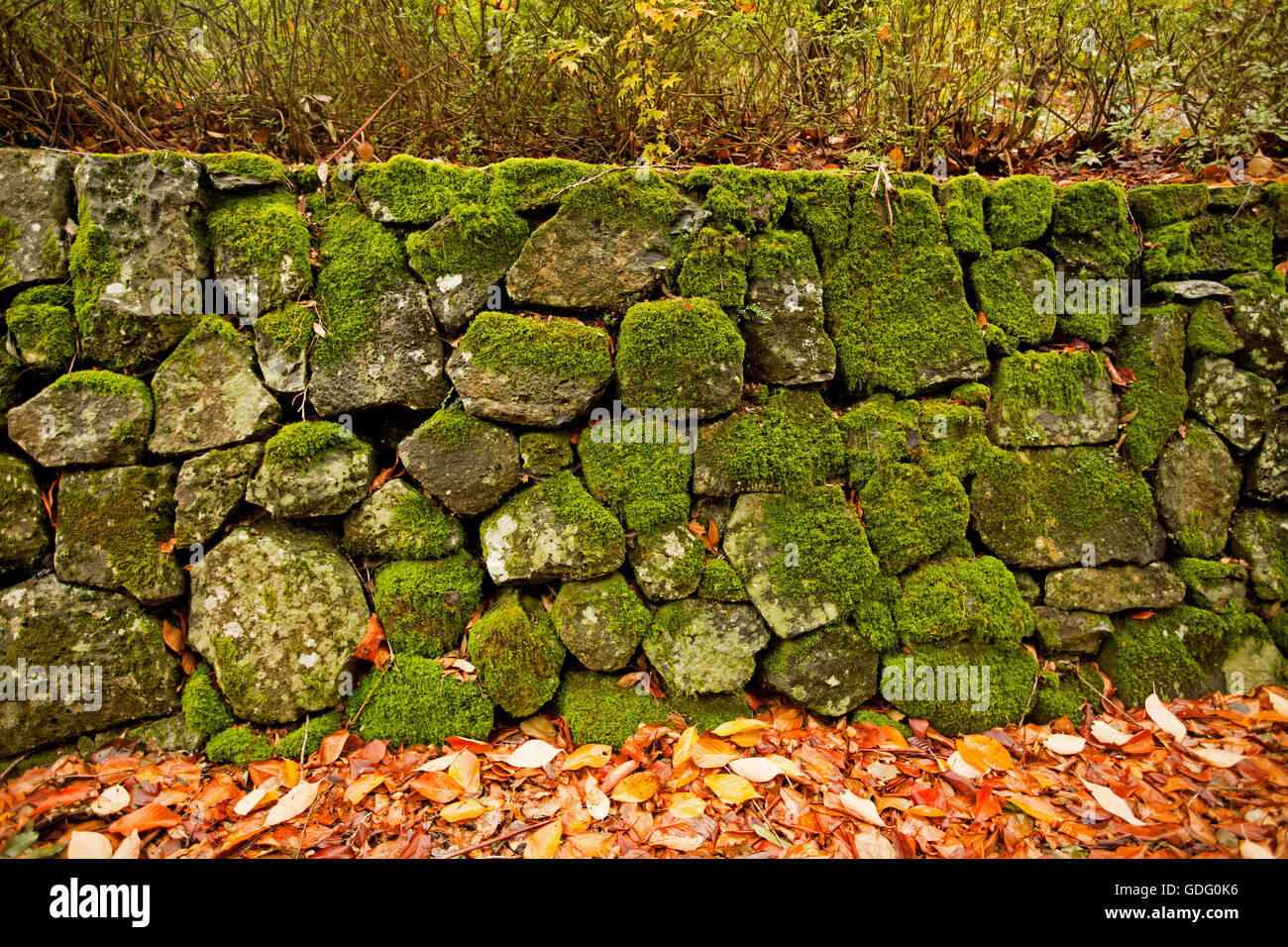 Famous Decorative Stone Walls Contemporary - The Wall Art ...