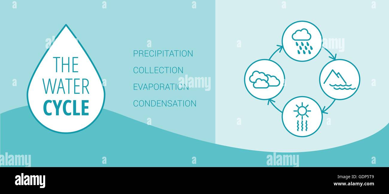 The water cycle vector diagram of precipitation collection stock the water cycle vector diagram of precipitation collection evaporation and condensation icons set ccuart Gallery
