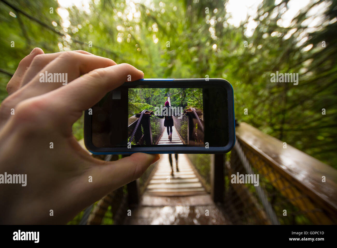 Man hand holding smartphone with image of woman on Lynn canyon suspension bridge, North Vancouver, British Columbia, - Stock Image