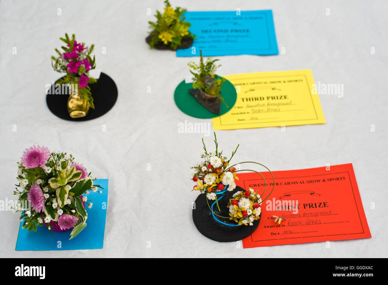 Prize winning miniature flower arrangements at Gwenddwr Show, Gwenddwr, near Builth Wells, Powys, Wales, UK - Stock Image
