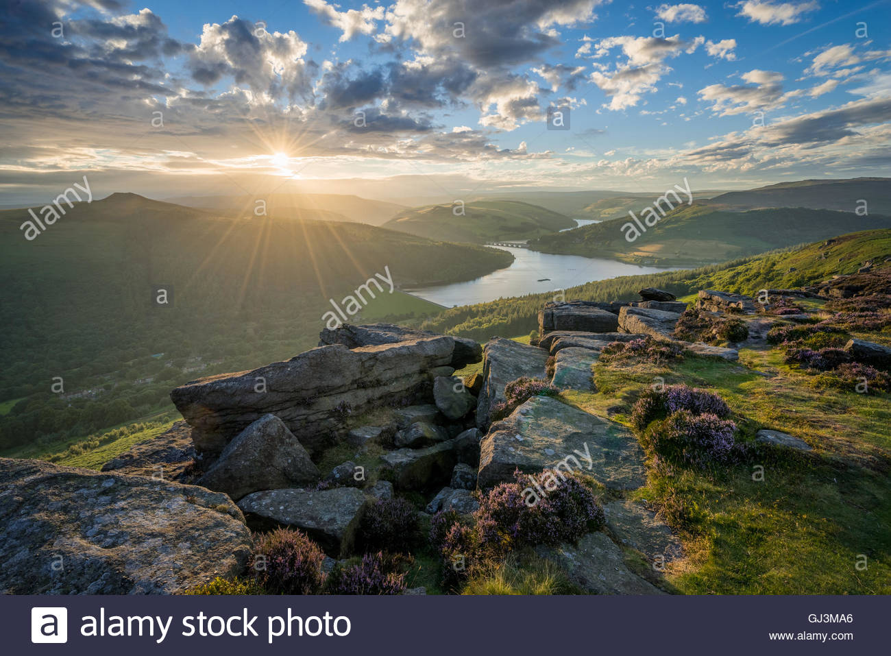 A stunning sunset with the heather just starting to bloom on Bamford Edge. - Stock Image