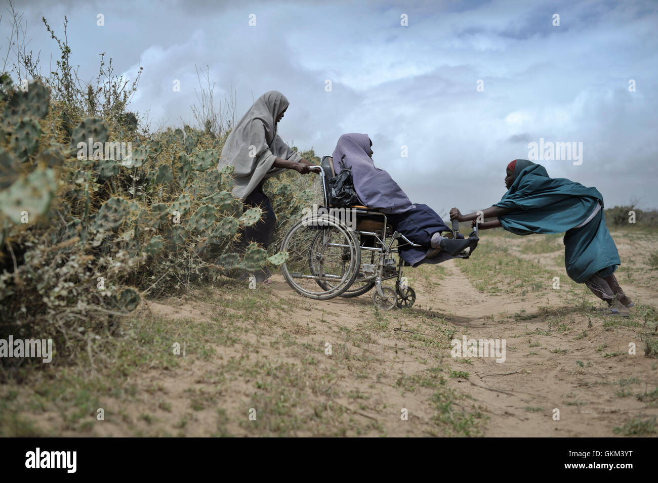 Two woman help another through a hedge of cactii at a food distribution center in Afgoye, Somalia, on August 4. - Stock Image