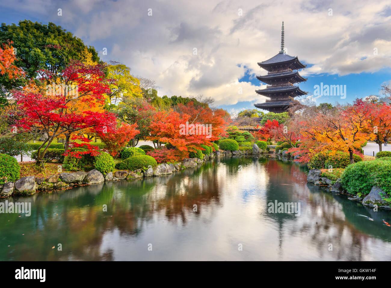 Kyoto, Japan at Toji Pagoda in Autumn. - Stock Image