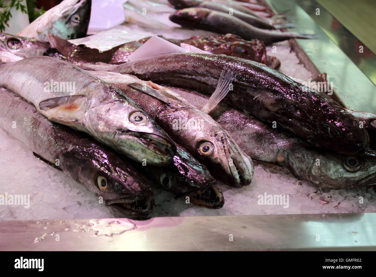 fish market in a southern europe cities - Stock Image