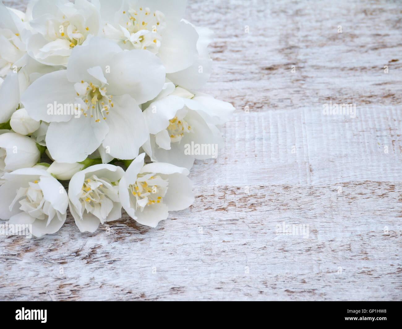 White english dogwood flowers bouquet in the corner of the wooden white english dogwood flowers bouquet in the corner of the wooden rustic background izmirmasajfo